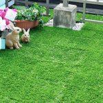 人工芝のジョイントマットでお庭を改造